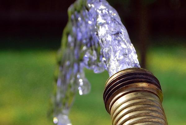 9 Water-Saving Tips for Summer Gardening