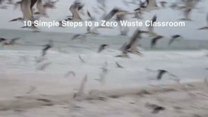 10 Simple Steps to Conducting a Classroom Waste Audit
