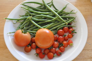 Organic harvest - Grown in our kitchen garden