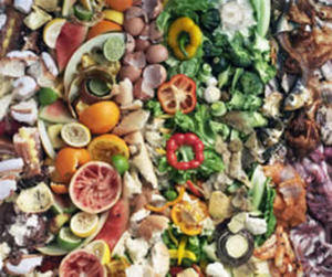 Using social media to reduce food waste via @adigaskell