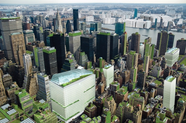Sustainable cities with Urban Gardening