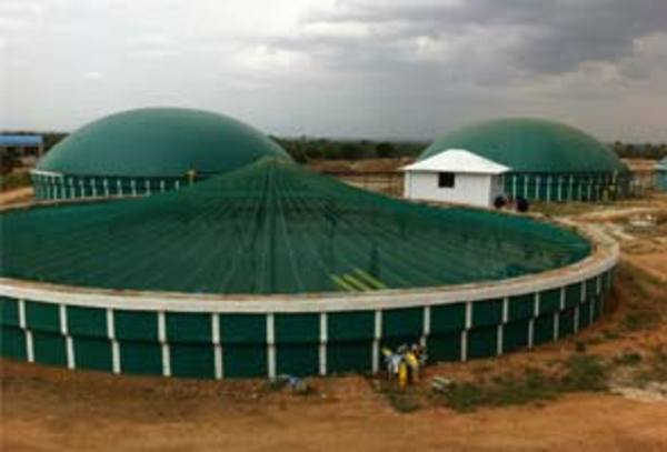 Tamil Nadu firm produces electricity using poultry waste