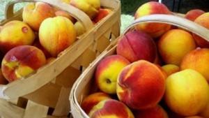 Former Trader Joe's President Opens Store Selling Expired Food via triplepundit