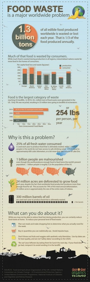 Food Waste | Visual.ly