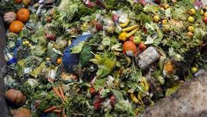 #FoodWaste: Six Meals A Week Thrown Away