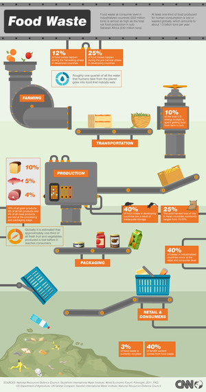 Food waste: From farm to fork and landfill [Infographic]