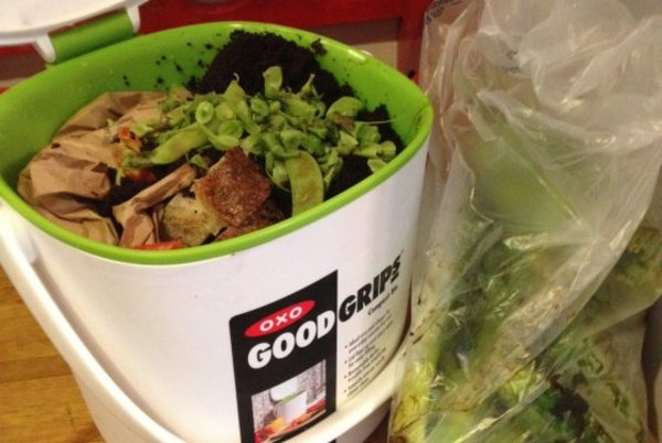 How I Learned to Love Composting in a Tiny New York Apartment