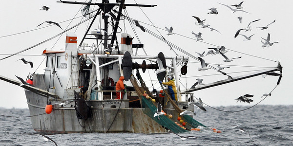 Warming Oceans Cause Major Ban On This Popular Seafood via @HuffPostGreen