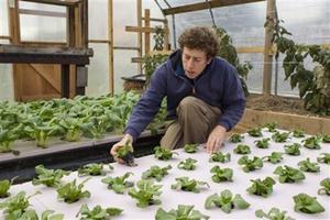 Amid holiday canned-food drives, U.S. food banks take up farming via @reuters