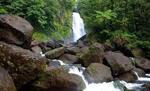 Ecotourism in Dominica: little island in the Caribbean