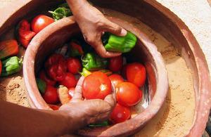 Energy-free Food Preservator