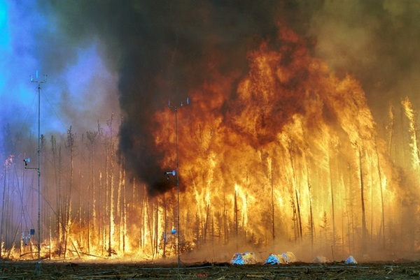 Wildfire Warning - Are You Ready ? | EcoCloud