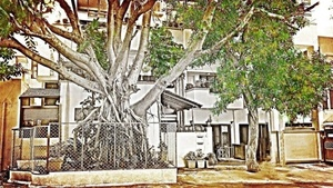Bangalore's Greenest Homes: The Dutt's Five Seasons House