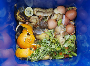 How to Avoid #FoodWaste This Holiday Season