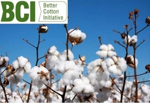 Better Cotton initiative - reduce the amount of water & chemicals used to grow cotton