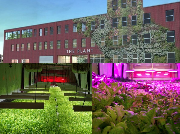 The Plant - Chicago's Biggest Urban Farm is a sustainable vertical farm using only renewable energy