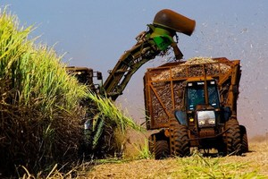 Biofuel made from sugar cane waste in Brazil could revolutionize the global energy industry