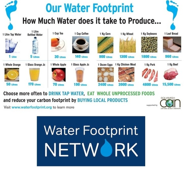 Water Footprint Network @WaterFootprintN - #water #sustainability