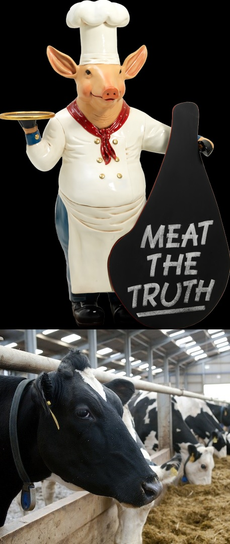 Meat the Truth - Climate change cause of intensive livestock production
