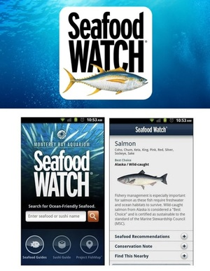 SeafoodWatch - finding sustainable seafood is easier with this app