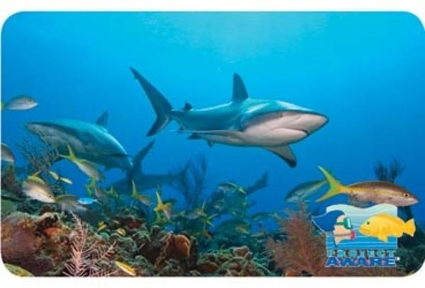 Project AWARE -  scuba divers protecting the ocean planet – one dive at a time