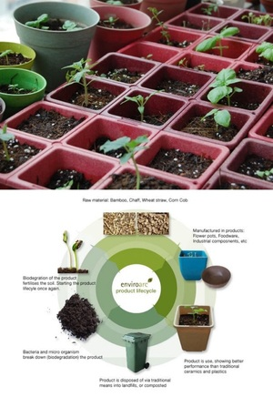 EnviroArc's biodegradable plant pots - no plastics to recycle or throw away