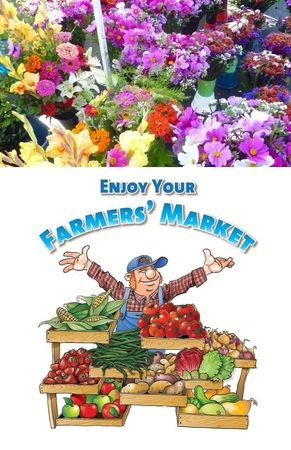 Flowers from Farmers Market - Why they are better..