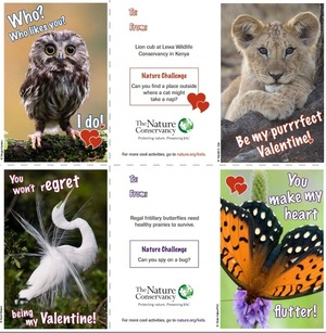 Kids Valentines Day Card Exchange - learn something about nature