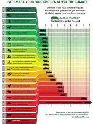 Carbon Footprint of Food via DailyGreen.com