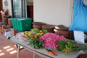 composting is a way of life  !