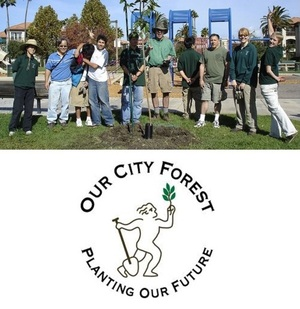 Our City Forest @OurCityForest - cultivating a green, healthy San José metropolis urban forest