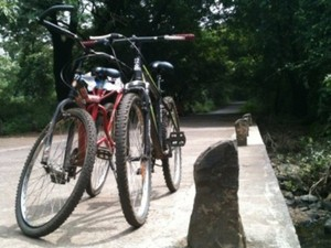 In the City: Cycling through the greenery of Mumbai | The Alternative
