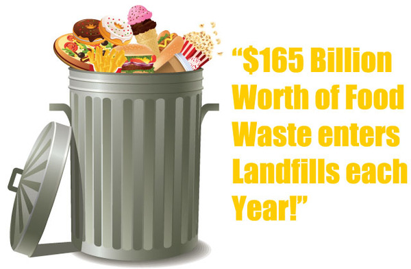Americans waste 33 million tons of food each year - what we can do to fight this problem
