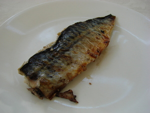 Mackerel is a sustainable fish