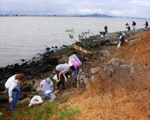 Earth Day Shoreline Cleanup Berkeley [Event]