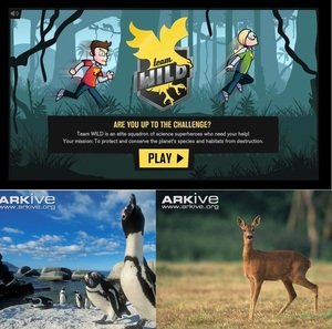 Team WILD - mission: protect / conserve planet's species & habitats from destruction